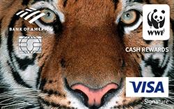 Cash loan in lima ohio picture 2